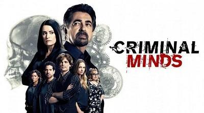 Мыслить как преступник 13 сезон